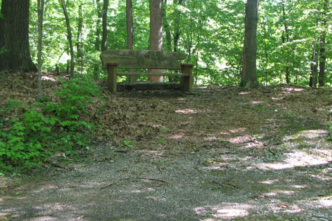 bench at goose neck