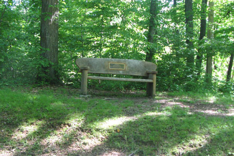 bench on Three Mile Hill