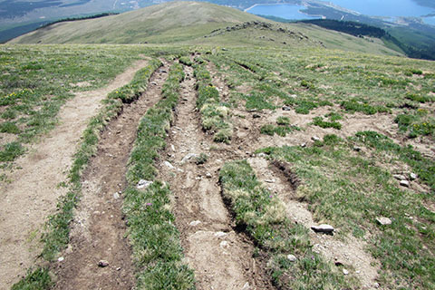 Four parallel track on the East Ridge of Mount Elbert