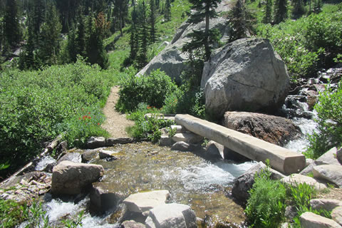 Creek crossing in the South Fork of Cascade Canyon