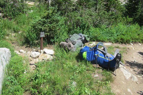 Backpacks laying beside the trail.
