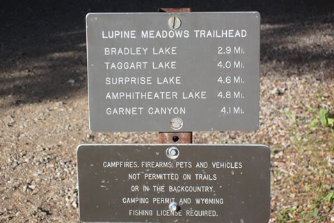 Lupine Meadows trail sign