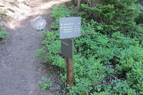 junction sign with the Boulder Ridge Trail