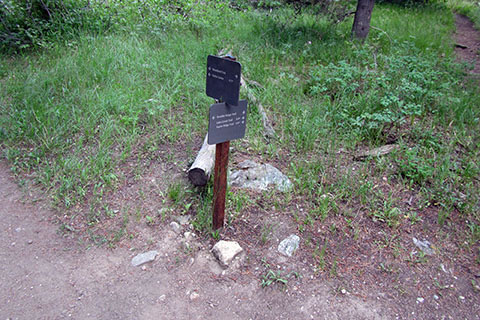 Trail junction with the other end of the Boulder Ridge Trail and the Connector Trail