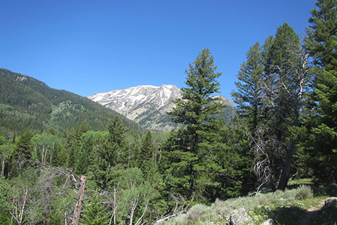 view to the west from Aspen Ridge Trail