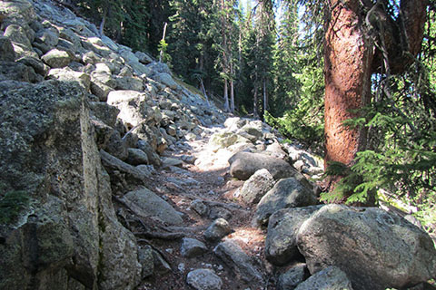 trail crossing a rock (talus) field on a rise