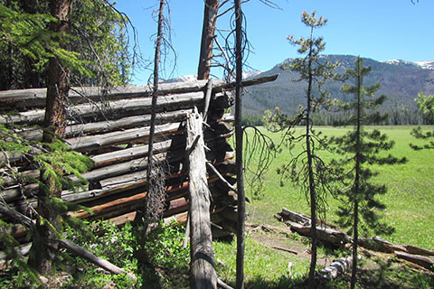 Ruins of log structure on the west side of Big Meadow