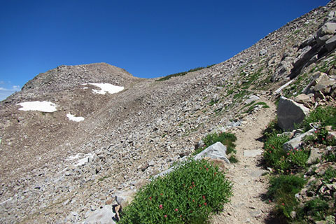 Trail descending from the divide into the North Fork of Cascade Canyon