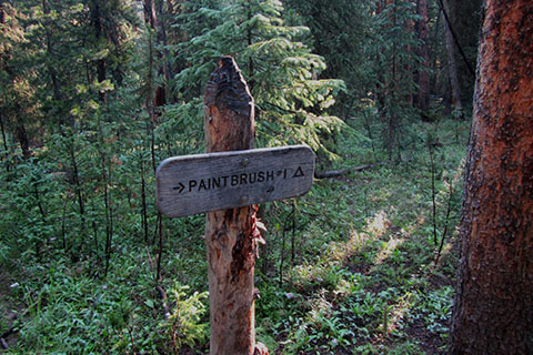 Wooden trail sign to Paintbrush campsite