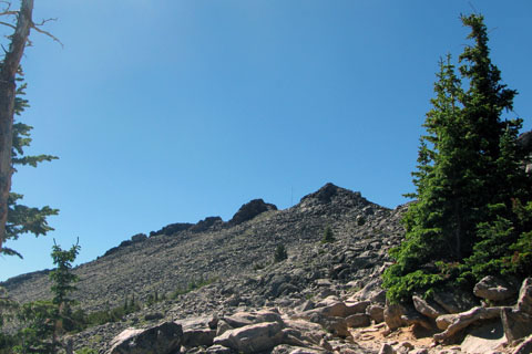 slope above treeline