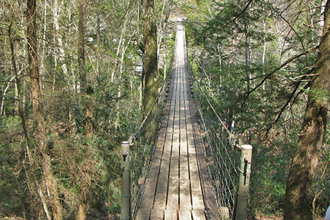 Piney Creek Suspension Bridge
