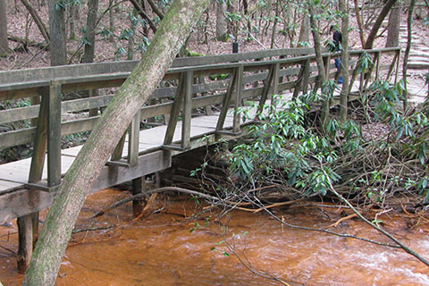 A sturdy bridge over Fall Creek