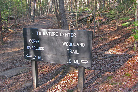 Woodland Trail - Overlook trail Junction sign
