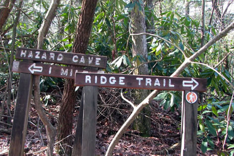 Ridge Trail Junction