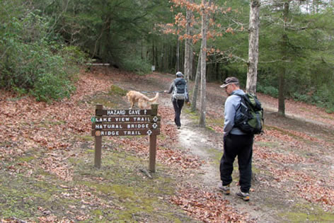 Beginning the hike at the trailhead