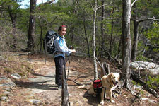 hiker and dog on North Rim Trail