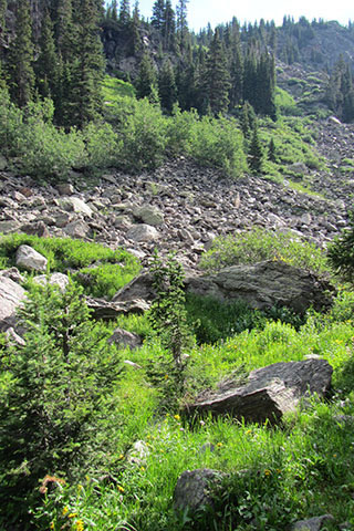 the rockslide close to the rockslide backcountry site